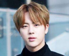 Jin (Kim Seok-Jin)